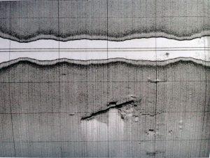 scansione sonar